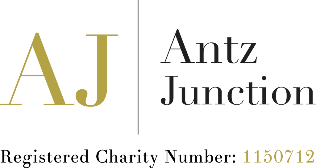 Antz Junction